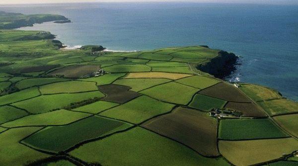 Как получить межевой план многоконтурного земельного участка?