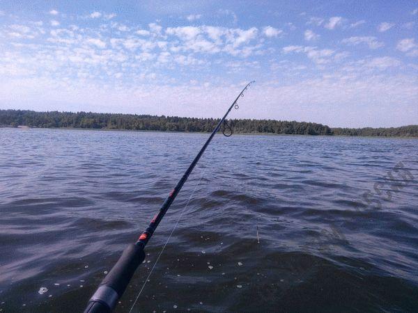 Новый закон о рыбалке 2019: правила, штрафы
